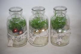 Растение в маленькой банке