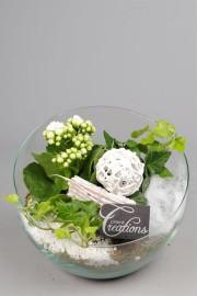Флорариум красивые мелочи