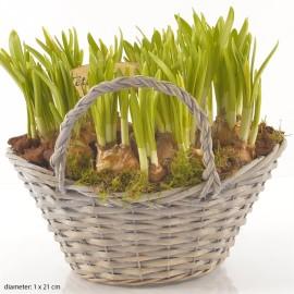 Корзина весна