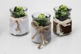 Растение в вазе с бантиком