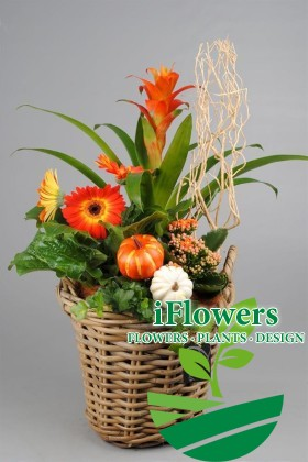 Высокая цветочная композиция в корзине