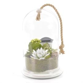 Флорариум с маленькими растениями