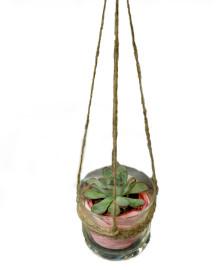 подвесной-флорариум