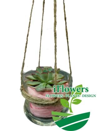 флорариум-в-подвеске