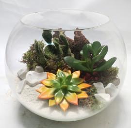 Природный флорариум