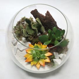 Флорариум с природой