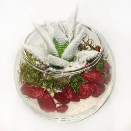 Новогодний-флорариум_2