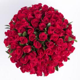 101 Красная роза-
