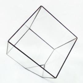 флорариум-куб
