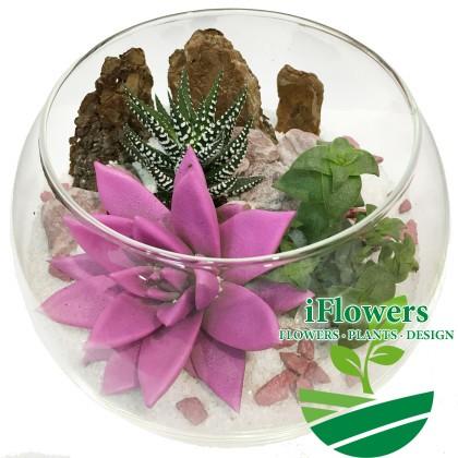 Женственный флорариум